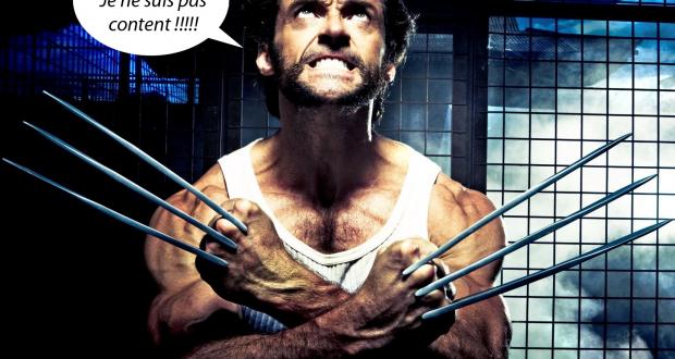 Wolverine qui pique